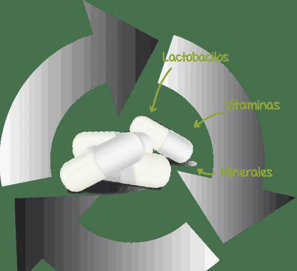 Lactoflora Pro Inmunidad