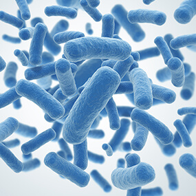 Lactoflora blog Elegir probiotico