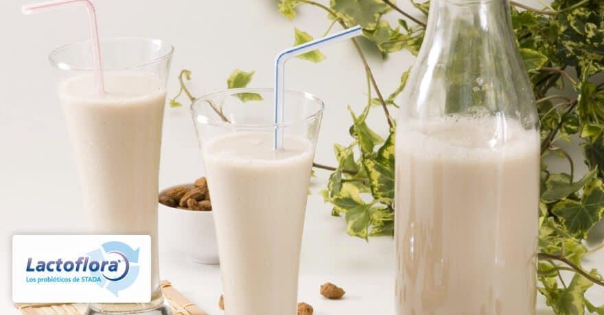 Alimentos probióticos Horchata