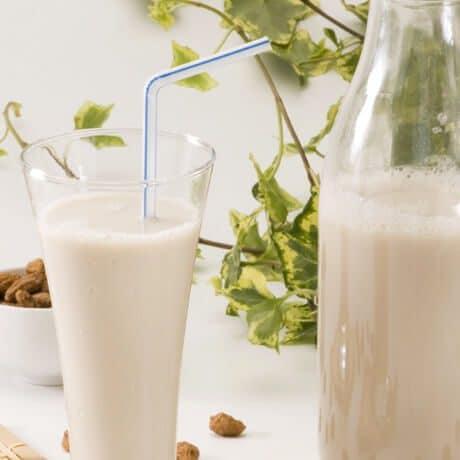 alimentos probioticos Horchata de chufa