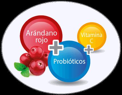 arandano rojo probioticos