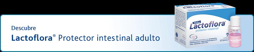 Protector intestinal para adultos con probioticos