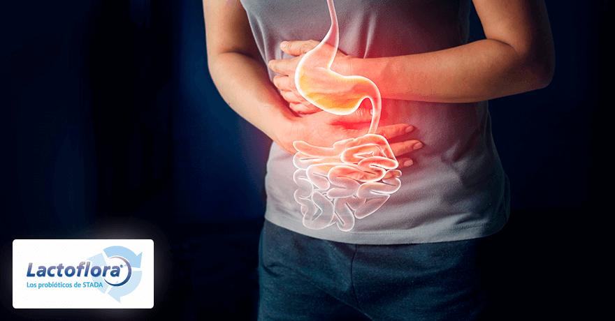 microbiota intestinal y disbiosis