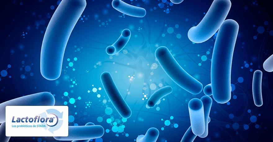 Flora bacteriana: qué es, qué beneficios te proporciona y cómo cuidarla